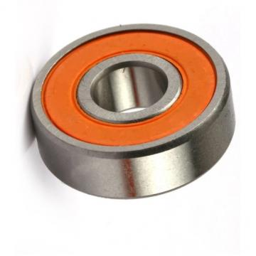 NSK, SKF, Koyo, NACHI, Kbc, IKO, Hrb, Mcgill Deep Groove Ball Bearing 6205zz, 6205-2RS1, 6205VV, 6205DDU for Electrical Motor