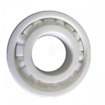 Kent Bearing Factory Deep Ball Bearing Rolling Ball Bearing 6304 6300 6301 6302 6303 RS Rz Zz NSK NACHI NTN Koyo Timken SKF Bearings